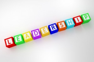 Twelve precepts of leadership
